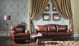 チョコレートソファー。 アメリカの標準的な家具