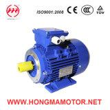Majestät Ie1 Asynchronous Motor/erstklassiger Leistungsfähigkeits-Motor 180L-6p-15kw