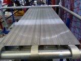 Plank de van uitstekende kwaliteit van het Aluminium van de Steiger (FF-0092)