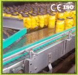Machine à tomates en conserve entièrement automatique en acier inoxydable