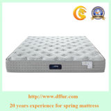 Hotel de cinco estrelas Bed Sponge Pocket Spring Bed Mattress-U23