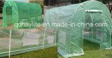 작은 관 출입 가능 PE PVC 덮개 정원 온실