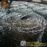Collegare pungente rivestito galvanizzato del Concertina del rasoio del ferro dell'acciaio inossidabile del PVC