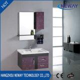 Cabinet de lavabo à la douche en acier étanche avec armoire latérale