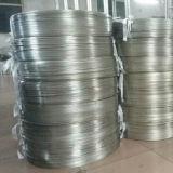 Tubo dell'acciaio inossidabile di ASTM 6.35*1.24 millimetro