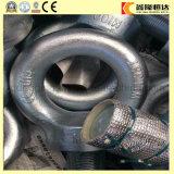 Bout van het Oog van het roestvrij staal de Fijne DIN 580 met Met hoge weerstand