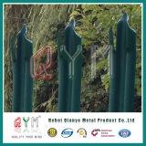 강철 Palisade 담에 의하여 직류 전기를 통하는 PVC에 의하여 입히는 말뚝 바 담을 검술하는 Palisade W 각 바