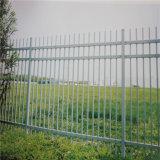 Palissade enduite clôturant ISO9001 : 2008