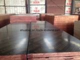 Waterproof Glue Hardwood Core Black Film Faced Contraplacado (HB010)