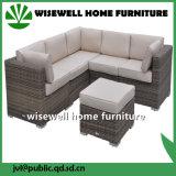 Im Freien Schnittmöbel PET Weidenrattan-einzelnes Sofa (WXH-036)