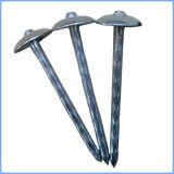 Chiodo galvanizzato del tetto della testa dell'ombrello
