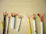fios elétricos do PVC do condutor 300V-500V de cobre (16mm 25mm 10mm 35mm 50mm 100mm)