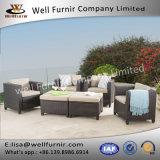 Vimine buono di Furnir Wf-17064 gruppo profondo della disposizione dei posti a sedere delle 6 parti con l'ammortizzatore