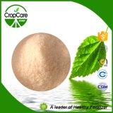 Fertilizzante composto NPK 16-16-16 di NPK