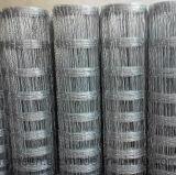 Rete fissa della maglia del bestiame del filo di acciaio a basso tenore di carbonio di qualità superiore
