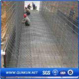 Treillis métallique soudé par qualité dans la construction