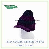 Pourpre et chapeau de Knit de l'hiver de marine avec le bord