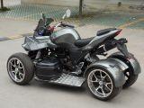 250cc EEC ATV en el camino