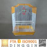 Neuer Entwurfs-Eisen-Vogel-Rahmen