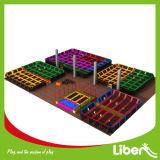 Parque profissional do Trampoline de Olymppic da ginástica com Dogeball