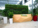 Высокое качество Искусственные растения и цветы Зеленая Стена Gu-Wall0977800001232