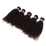 100%年のバージンインドのAfro Kinky Curly Hair Hot Sale Afro Kinky Hair Weaving Grade 7A Afro Kinky Human Hair