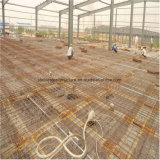 低価格の販売のための前設計された軽い鉄骨構造の研修会