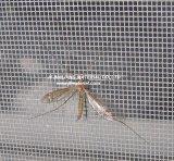 Сетка насекомого экрана окна насекомого Fiberglss цвета Black&Gray