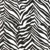 Tsautop Imitation peau de l'eau Zebra Impression de graphiques de transfert de film