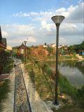 indicatore luminoso solare di 12W LED per sia il giardino che la via