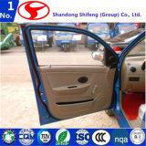 Automobili elettriche cinesi ad alta velocità da vendere D101