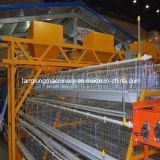 La alta calidad a bajo precio equipo de la jaula de Pollos Parrilleros