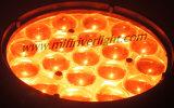 중국에서 19PCS 쿼드 기운 세척 급상승 LED 이동하는 헤드
