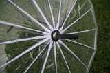 يعلن شفّافة [بلستيك متريل] مظلة مع علامة تجاريّة طباعة لأنّ خارجيّة
