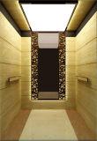 Ascenseur de Panormic de Shandong Fujizy Elevator Co., Ltd, qualité
