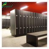 El armario de almacenamiento de HPL estudiante impermeable con banco