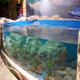 el tanque de pescados de acrílico de gran tamaño de 10m m a de 200m m, acuario de acrílico