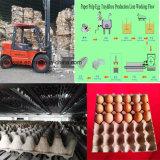 Huevo de pasta de papel automático caja de cartón máquina de moldeo por decisiones bandeja de huevos