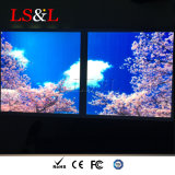 Luz do ecrã plano do diodo emissor de luz do sentido do produto novo 2X2 para a decoração