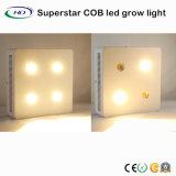 CREE leiden van de MAÏSKOLF 4*200W groeien Licht voor de Groene Installaties van het Huis
