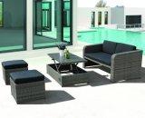 Le sofa extérieur de Jersay de jardin de rotin de bureau d'hôtel de maison de patio a placé (J556)