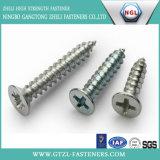 DIN968 de los tornillos del acero inoxidable con la pista avellanada