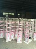 분홍색 주문 가공 슈퍼마켓 선반 음식과 음료 진열대