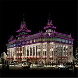 Las ventas de Hot 15*25mm 110V de color púrpura alto brillo de la luz de neón flexible de luz de Navidad