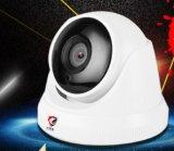 건축 용지를 위한 PTZ 비데오 카메라를 추적하는 지적인 IP PTZ 자동차