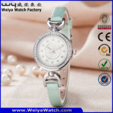 Reloj ocasional de las señoras del cuarzo de la correa de cuero del ODM (Wy-079B)