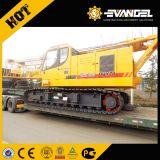 55 тонн мини-гусеничный кран (XGC55)