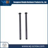 Heißes Verkauf Soem-schwarzes hohles rundes Hauptmetalllange Schraube