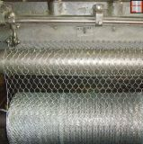 Rete metallica all'ingrosso del pollo di alta qualità una rete metallica esagonale del rivestimento supplementare