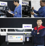 De nieuwe UVMachine van de Printer van het Leer van de Desktop UV4060 van de Printer